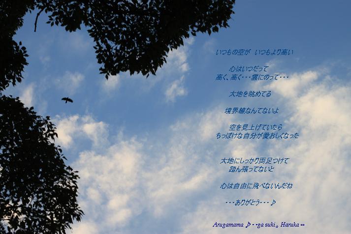 a0141400_12881.jpg