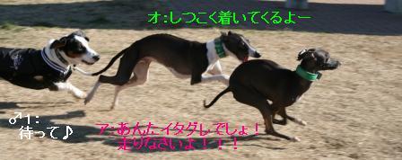 f0187704_10205453.jpg