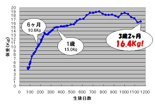 c0113109_21339.jpg