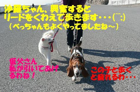 f0121712_1793349.jpg