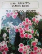 f0159815_15334599.jpg