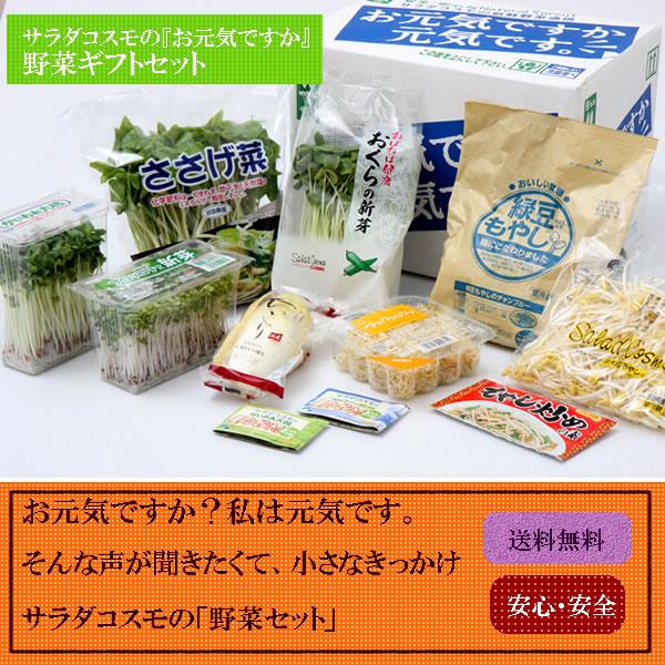 ♪新鮮 発芽野菜通信『大寒ですが・・・』♪_d0063218_9475825.jpg