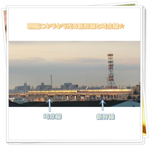 f0182121_100232.jpg