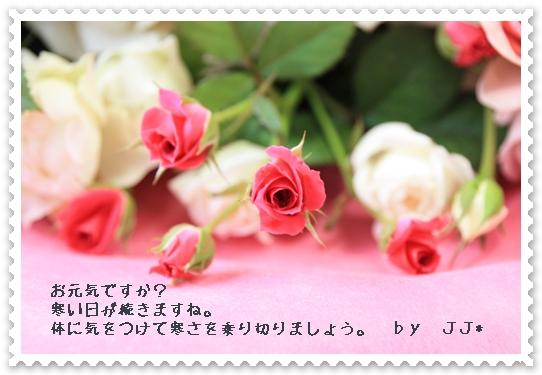 d0081464_21174738.jpg