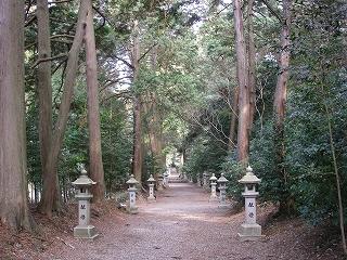 関市の巨木を2本_e0064783_22214913.jpg