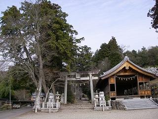 関市の巨木を2本_e0064783_22225853.jpg