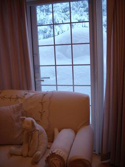 大雪で。_e0086738_16252164.jpg