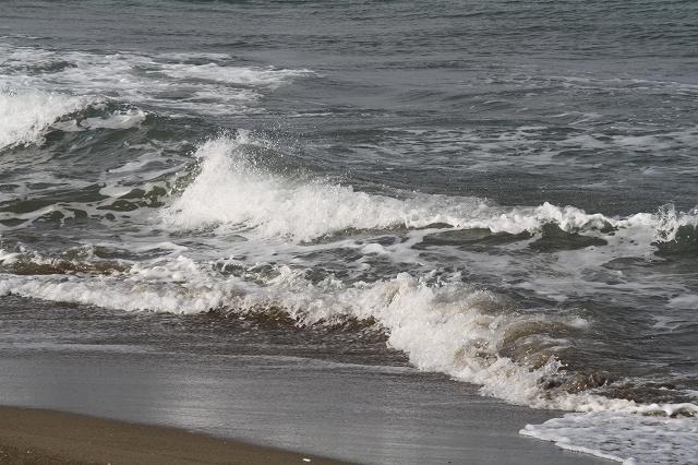 海1月20日(水)_b0112351_11453356.jpg