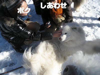 d0033151_19282011.jpg