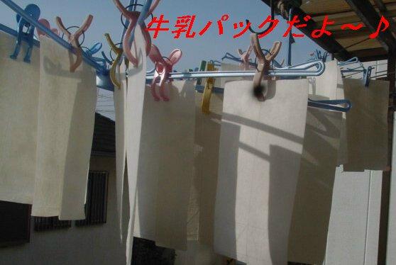 f0179357_1020393.jpg