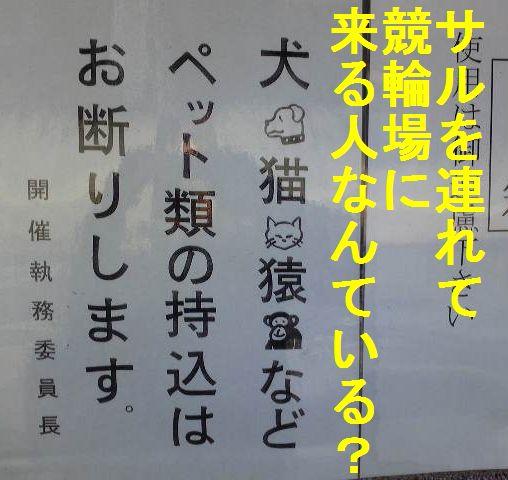 c0175759_1991581.jpg