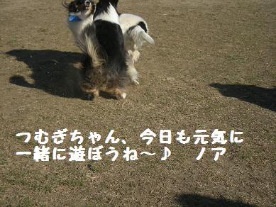 f0081100_20231613.jpg