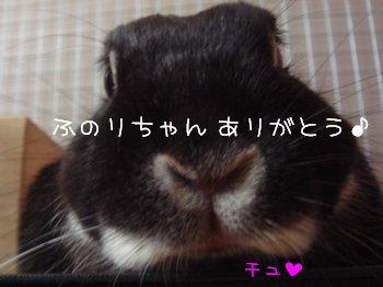 b0081503_1474591.jpg