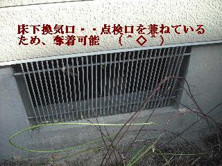f0031037_1981872.jpg