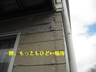f0031037_2001884.jpg