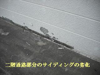 f0031037_200190.jpg