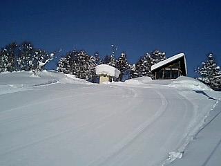 野沢温泉スキーツアー 後篇_e0159969_1853730.jpg