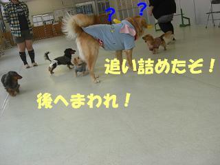 f0170713_13273062.jpg