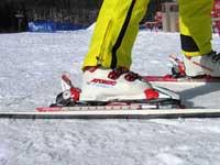 スキーを力学的に考えよう! ①なぜ、止まれるのか?_a0150315_1813881.jpg