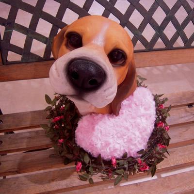 Valentine\'s Chico-Chicoバレンタインのちこり村_d0063218_1421376.jpg