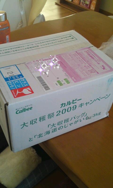 b0041532_8324481.jpg