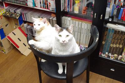 おかきとヨウカンさん_a0028451_142054.jpg