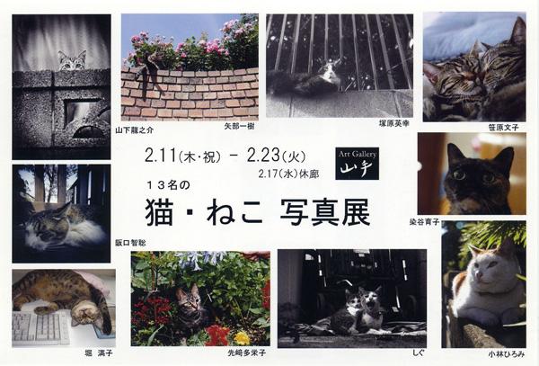 第1回 猫・ねこ 写真展 のご案内 Art Gallery 山手 横浜 ピンホール写真_f0117059_21144211.jpg