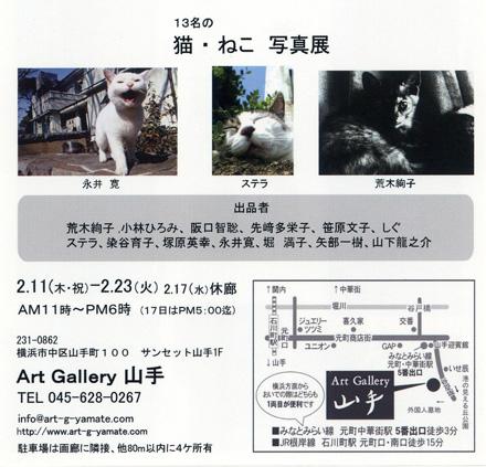 第1回 猫・ねこ 写真展 のご案内 Art Gallery 山手 横浜 ピンホール写真_f0117059_21152486.jpg