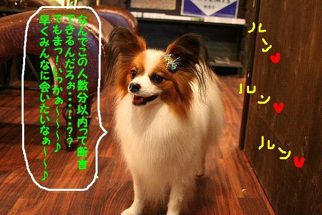 b0130018_1652142.jpg