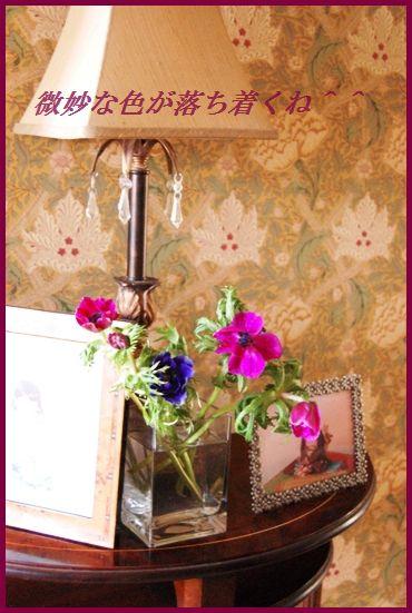 ぽかぽか♪玉ねぎとわかめの豆板醤ジンジャースープ_d0104926_2483692.jpg