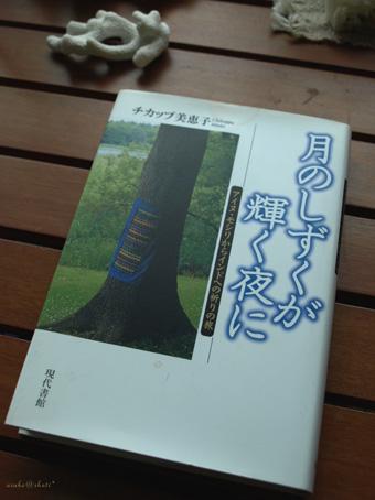 カムイの言霊―物語が 織り成すアイヌ刺繍_a0094336_1134853.jpg