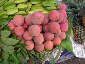 神に少し祝福された果物 ガブ_c0030645_20104887.jpg