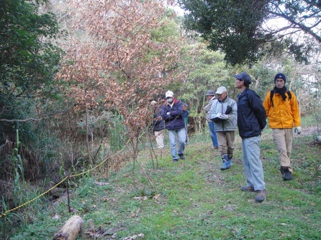 うみべの森を育てる会の定例活動日:「うみべの森の総点検」_c0108460_187544.jpg