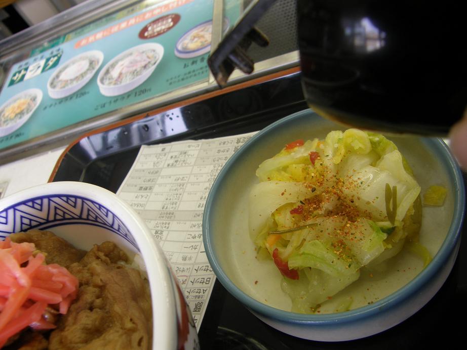 吉野家の牛丼   川西店_c0118393_10561069.jpg