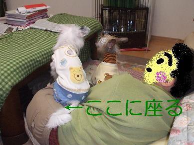 f0179203_8555183.jpg