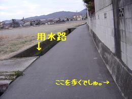 a0158613_15521981.jpg