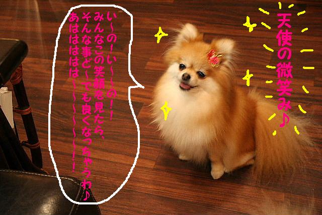 2009最後のお客様!!_b0130018_1853763.jpg