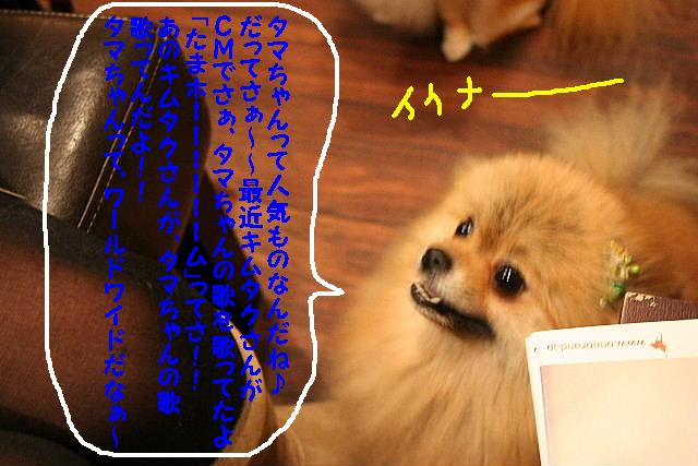 2009最後のお客様!!_b0130018_1854489.jpg