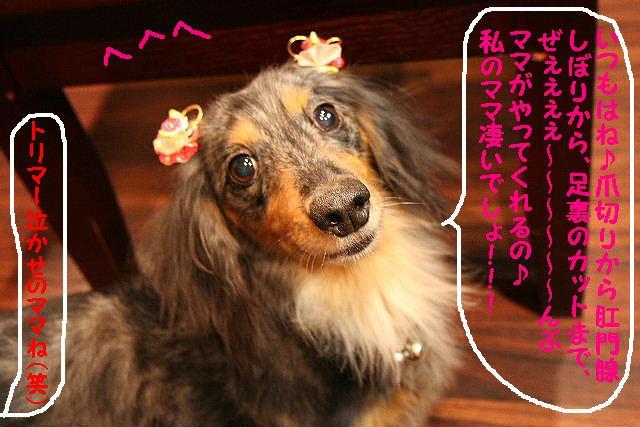 2009最後のお客様!!_b0130018_1871610.jpg