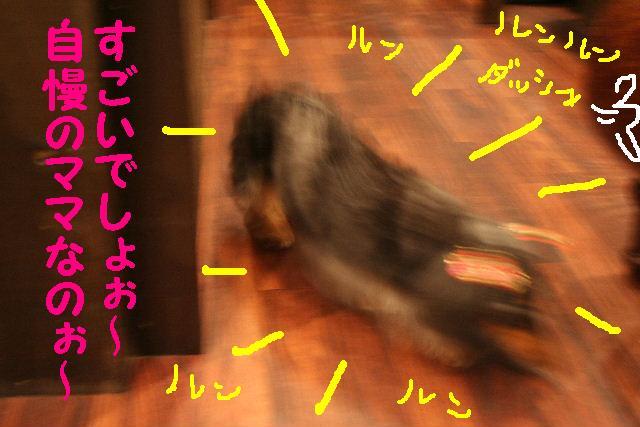 2009最後のお客様!!_b0130018_1872476.jpg