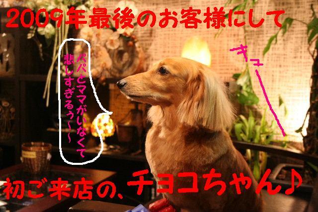 2009最後のお客様!!_b0130018_1885274.jpg