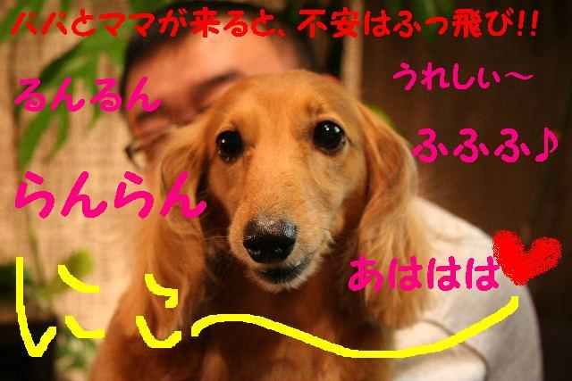 2009最後のお客様!!_b0130018_18941.jpg