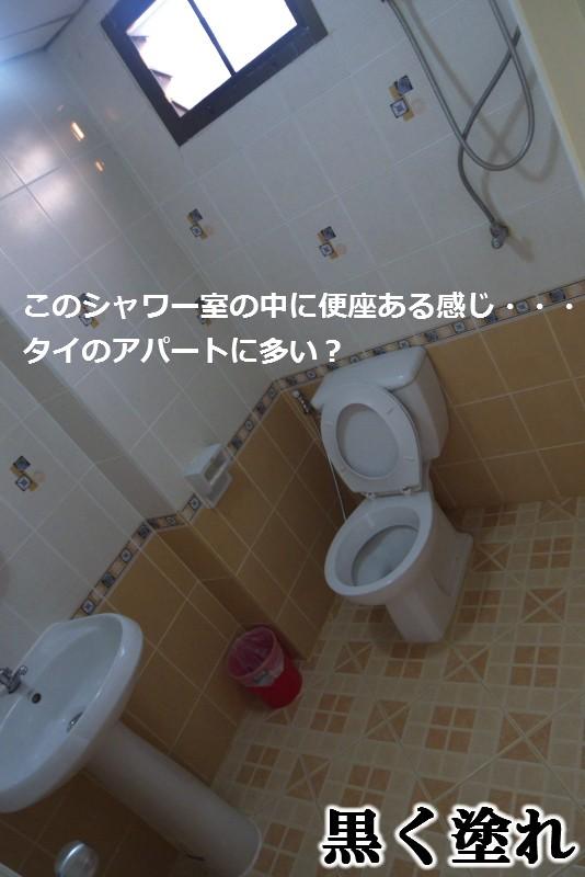 c0076838_12383054.jpg