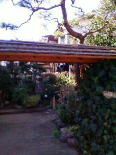 紫仙庵の庭・・・3_f0138653_18423832.jpg