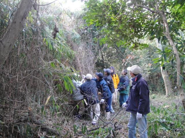 うみべの森を育てる会の定例活動日:「うみべの森の総点検」_c0108460_7264437.jpg