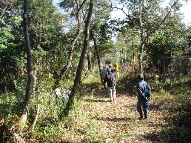 うみべの森を育てる会の定例活動日:「うみべの森の総点検」_c0108460_7271787.jpg