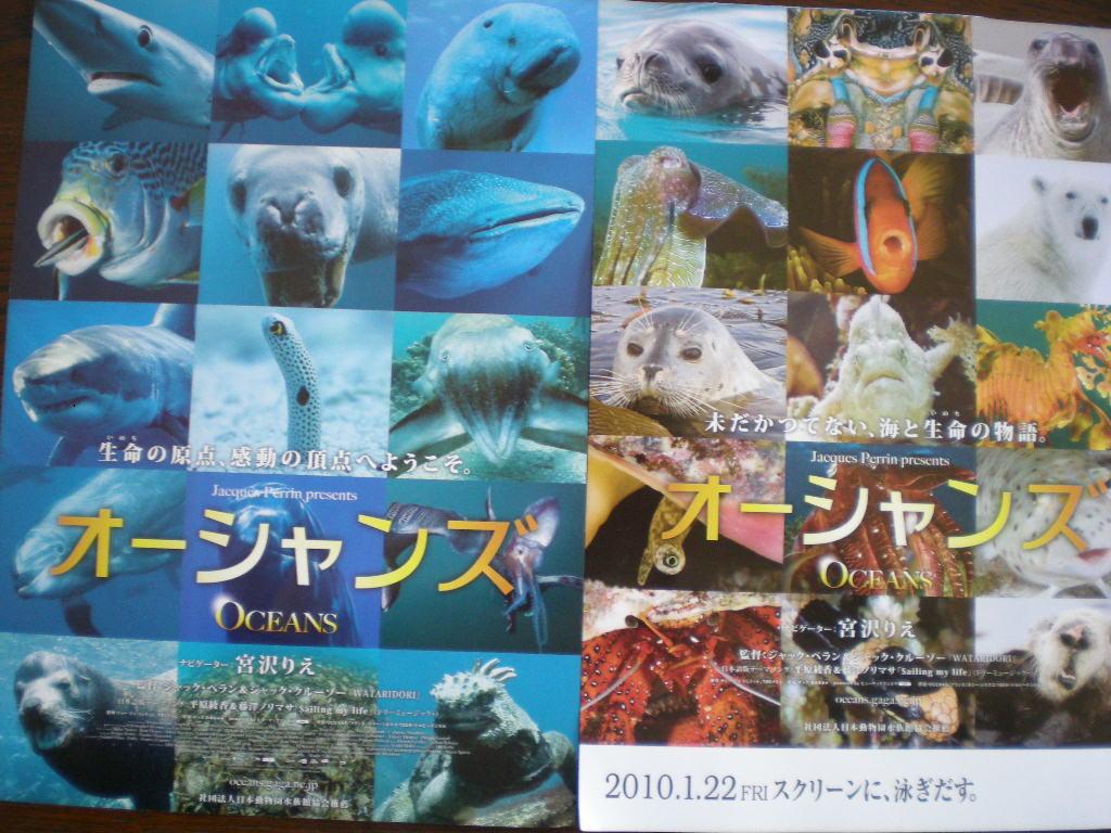 2010年1月24日(日)愛ちゃん絵の下絵と映画「オーシャンズ」_f0060461_17201982.jpg