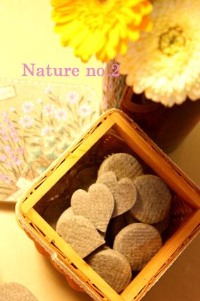 Nature no2 完成!_d0110462_18383455.jpg