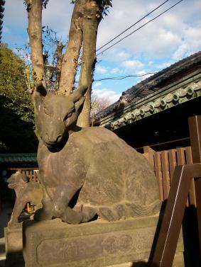 牛嶋神社~向島(鳩の街通り商店街)こぐまカフェ_f0118879_2326571.jpg