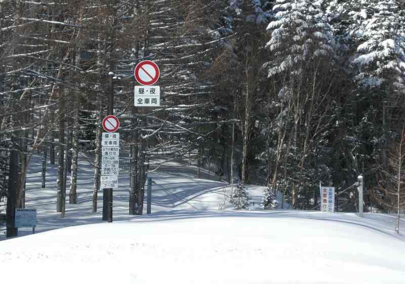 スキー_f0100825_223875.jpg